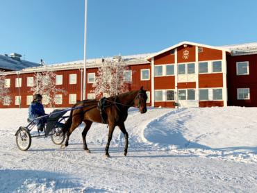 Travhäst med kusk och sulky framför Wångens fastighet i bakgrunden