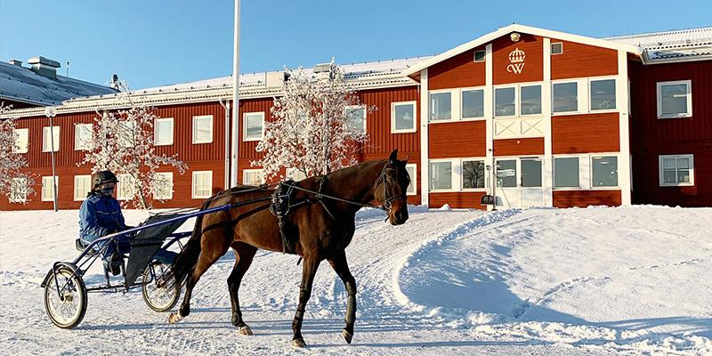 Wången, riksanläggning för hästnäringen, använder Planima för sitt fastighetsunderhåll